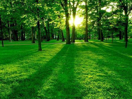 Красоты природы тем самым вы сможете