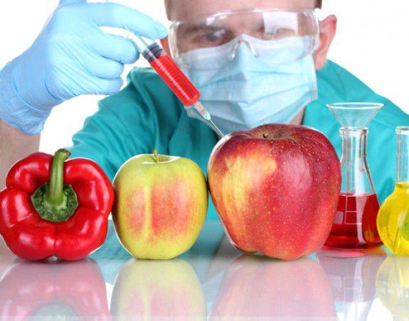 ГМО-продукты могут привести к мужскому бесплодию