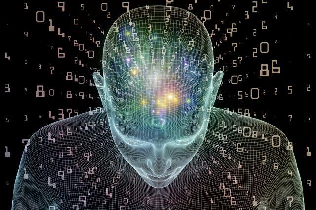 мозг человека понимает сне
