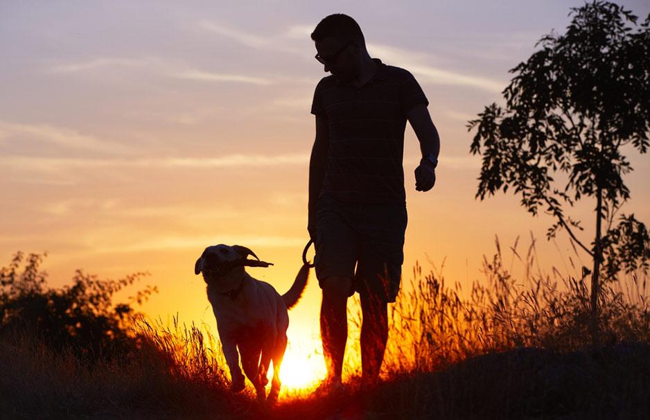 возвращены фотосессия с собакой для мужчины заявления загранпаспорт