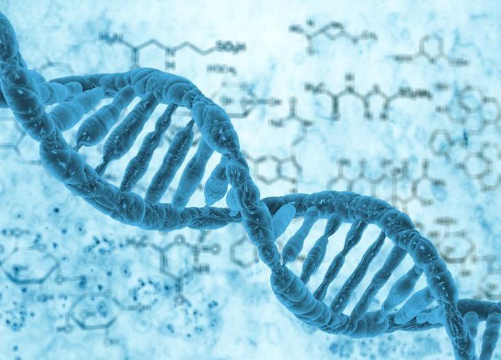 выявлены генетические особенности влияющие рост человека