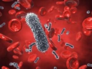 Ученые установили: каждое новое поколение бактерий сильнее предыдущего